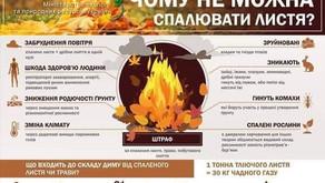 Чому не можна спалювати листя?!