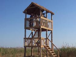 Орнітологічна вежа