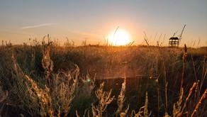 """Переможці фото-конкурсу """"Національний природний парк """"Тузлівські лимани"""" очима туристів"""""""