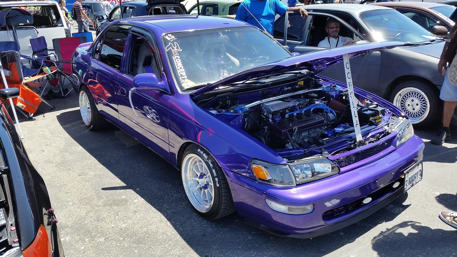 "My Purple 101... AKA ""Purple Haze"" 8e7f71_6fc73767928b478bb9c8ad2a8cab67d9"