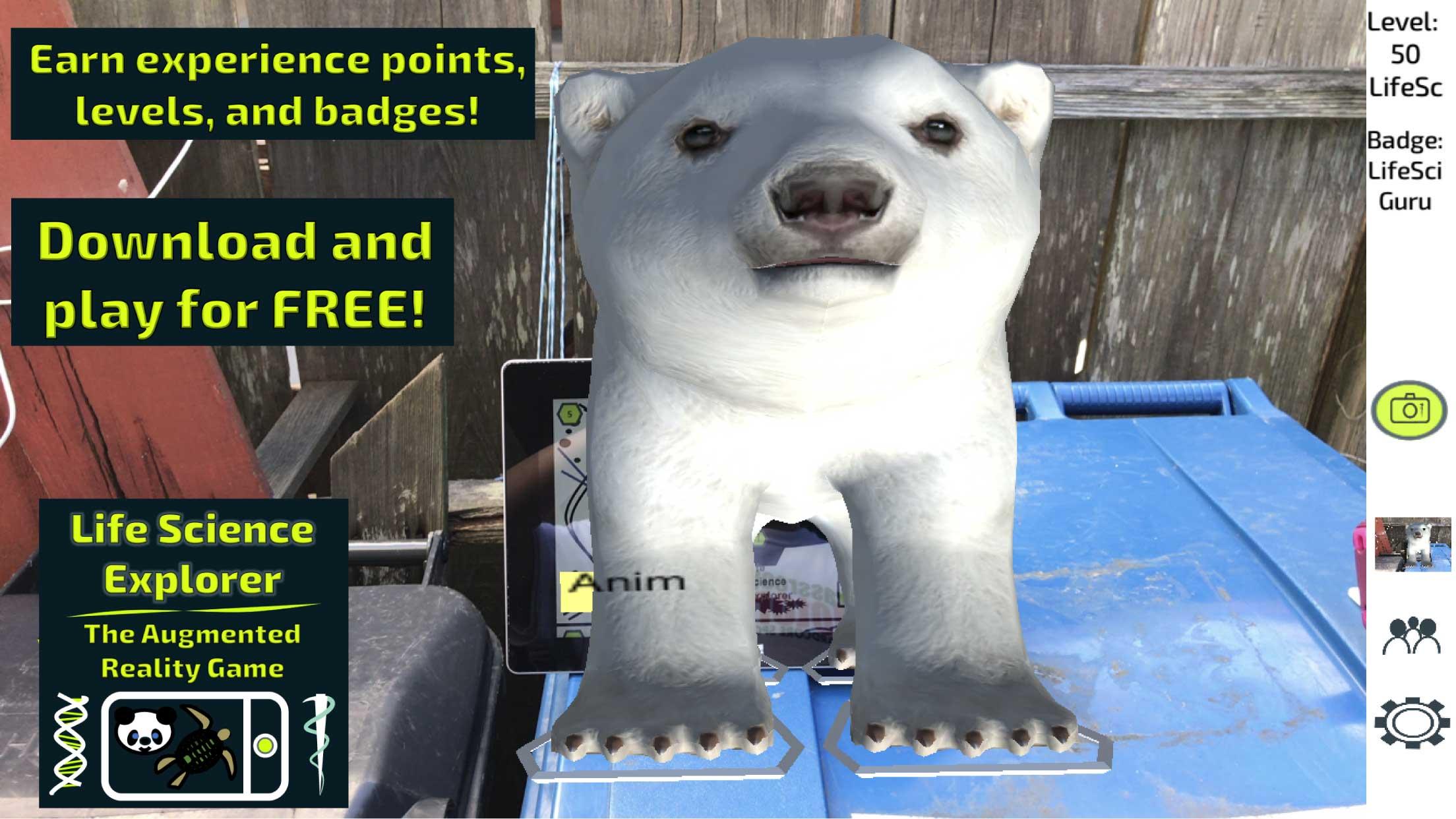 polarbeariOS8landscape