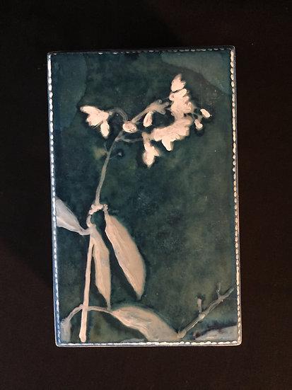 Painted Lady mini box