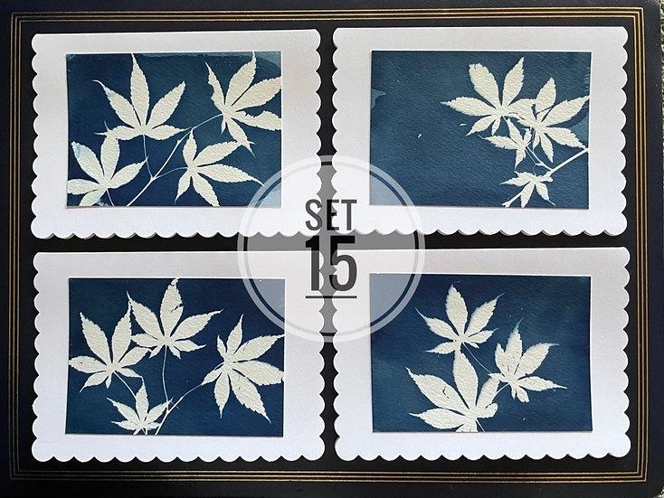 card set 15