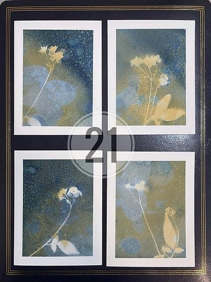 card set 21