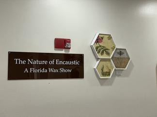 Florida Wax at Bok Tower and Gardens
