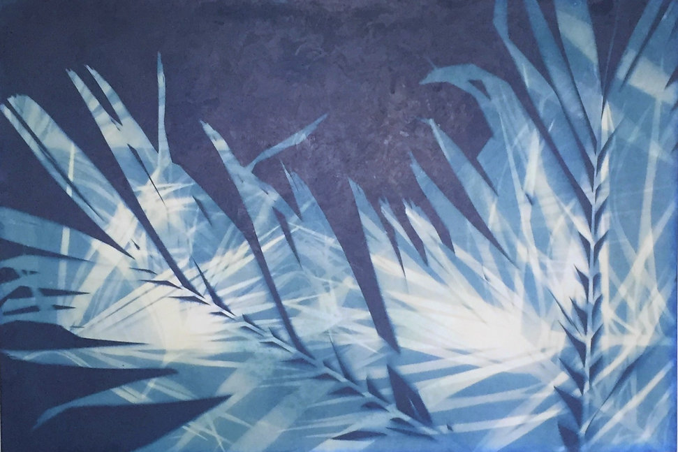 Palm Grove from my intersections collection, a double exposed cyanotype with encaustic texture.  Traditional blue and white hues make this a modern take on bontanicals.
