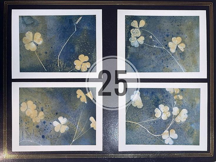 card set 25