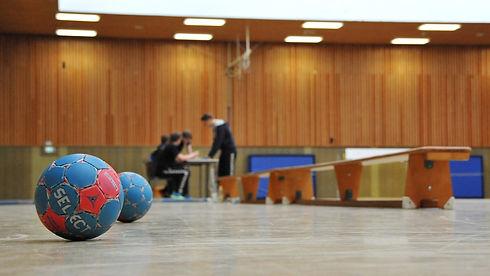 handball-3113631_1920_edited.jpg