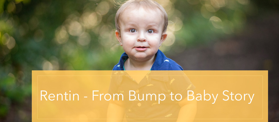 Rentin - From Bump to Baby Story