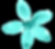 teal flower.png
