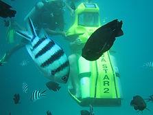 Bali Water sports best deals
