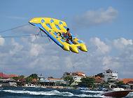 Underwater bali activities and flying fish