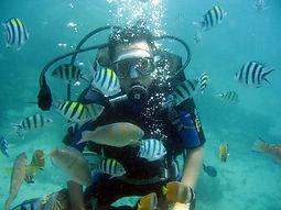 Diving in Bali. Bali Water Sports