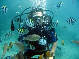 Diving in Bali. Bali Water Sports
