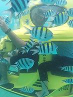Water sports in Bali. Bali water sports package