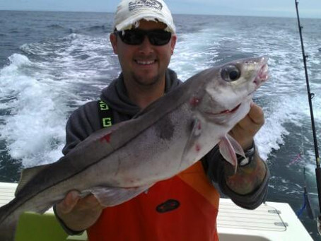 How to Have the Best Maine Deep Sea Fishing Experience