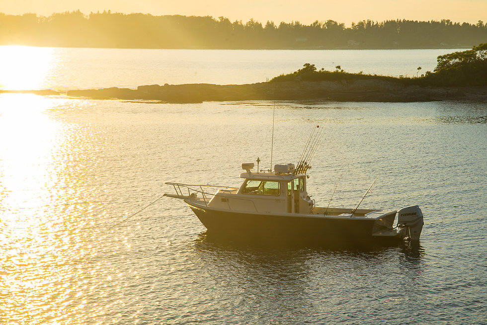 Harbor Cruise to Jewell Island Maine