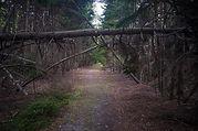 Island Hiking near Portland Maine