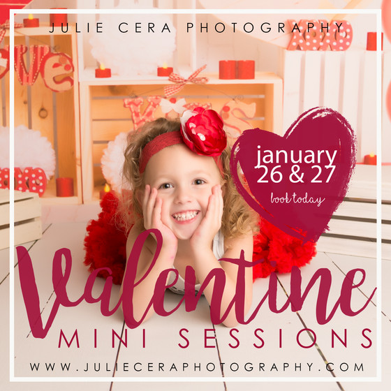 Valentine's Day Mini's Booking NOW!