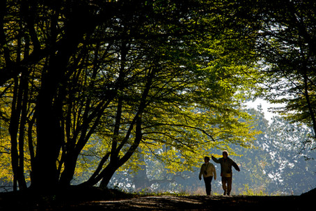 Respiră Natura / Breathe the nature