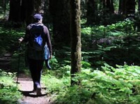 Woman Hiker on Things To Do In Washington