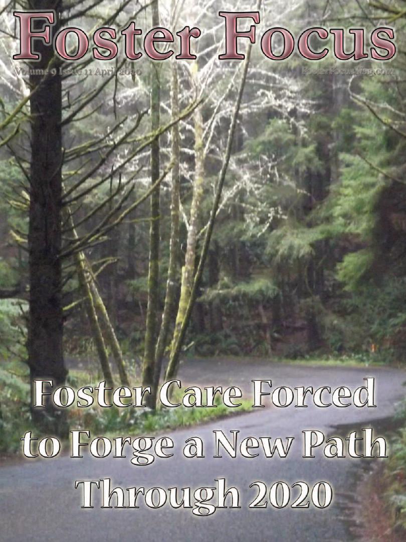 Foster Focus.jpg