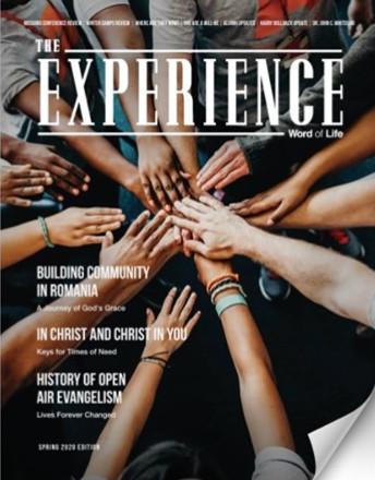 The Experience.jpg