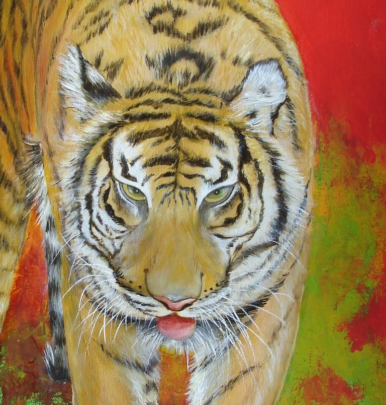 tigre, détail