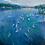 Thumbnail: Deep Waterfront