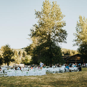 Outdoor reception in lower lawn