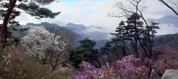 the beautiful mountains of North Korea