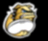 CRSM_Comunicacao_Site_Logo_edited.png