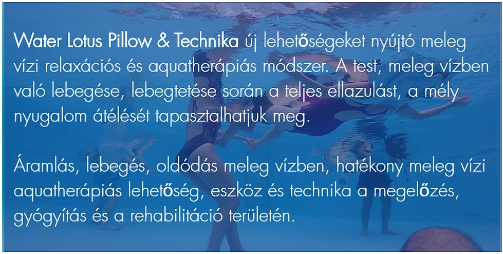 wlp technika.png