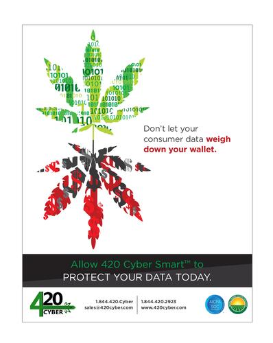 Digital Ad, 420 Cyber Security