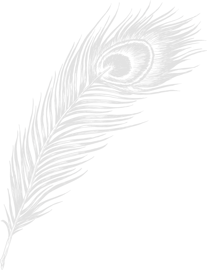 Faded Peacock Feather_2x.png