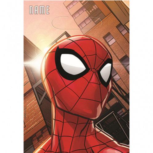 Spider-Man Web Loot Bag