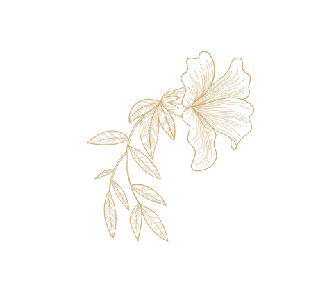 Florals%20single%20gold-02_edited.png