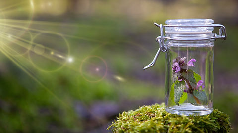 Bottle with Bach Flower Stock Remedy -