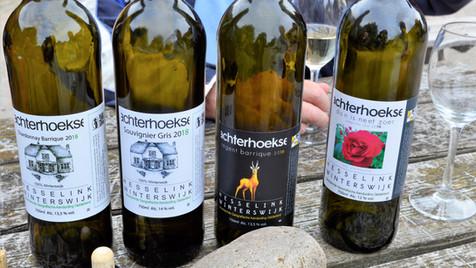 Born To Taste Wines