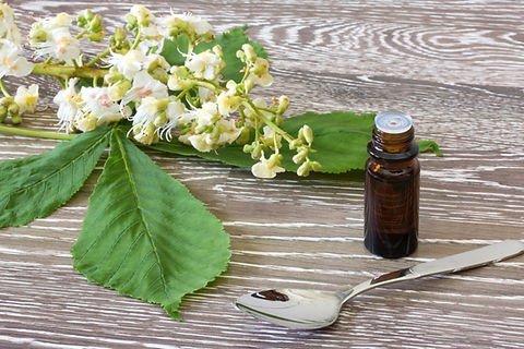 Bach flower remedies with blossoms of wh