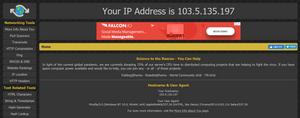 What's My IP Address?