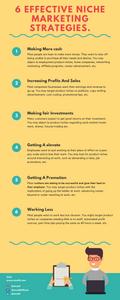 6 Effective Niche Marketing Strategies.