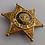 Thumbnail: American Gothic (TV) (1995-8) Deputy Sheriff Ben Healy (Nick Searcy) Badge (580)