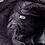 Thumbnail: Doctor Sleep (2019) Dan Torrance (Ewan McGregor) Jacket (0722)
