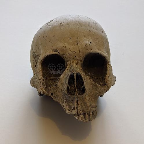 Cursed (TV) (2020) Temple of Calliech Skull (0528)