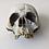 Thumbnail: Cursed (TV) (2020) Temple of Calliech Skull and Bones (0509)