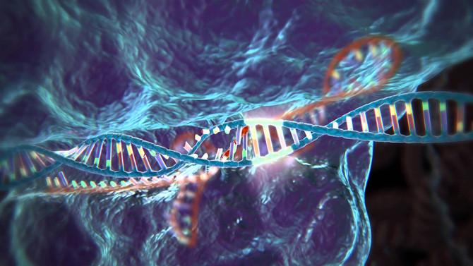 Une scientifique obtient le feu vert pour modifier le génome humain