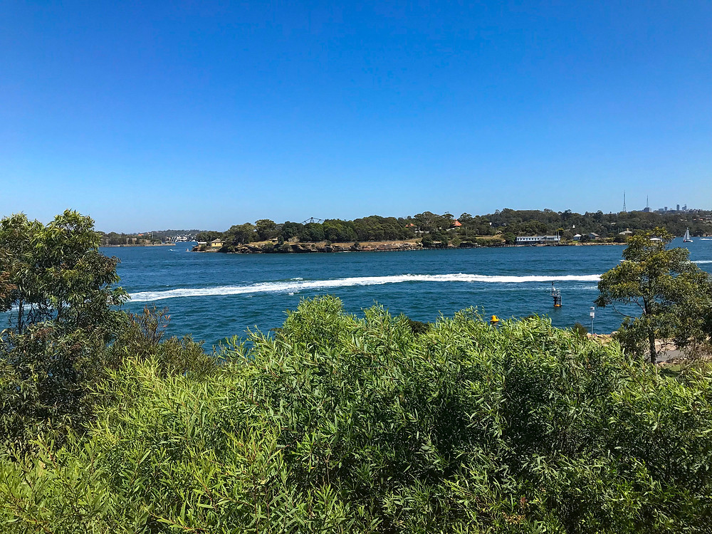 Barangaroo Reserve, Sydney