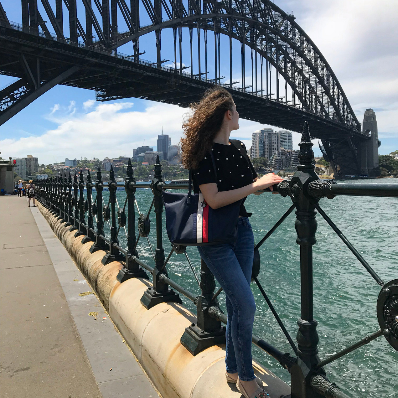 Admiring the Harbour Bridge
