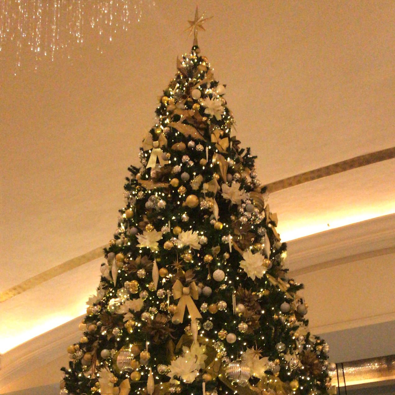 Christmas Tree in St. Regis